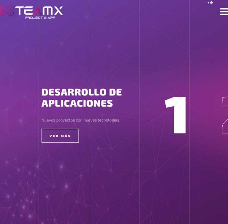 Teamx®